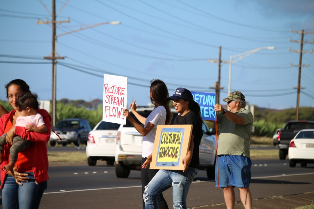 Water rights rally on Hāna Highway (5.3.16). Photo by Nicole Schenfeld.