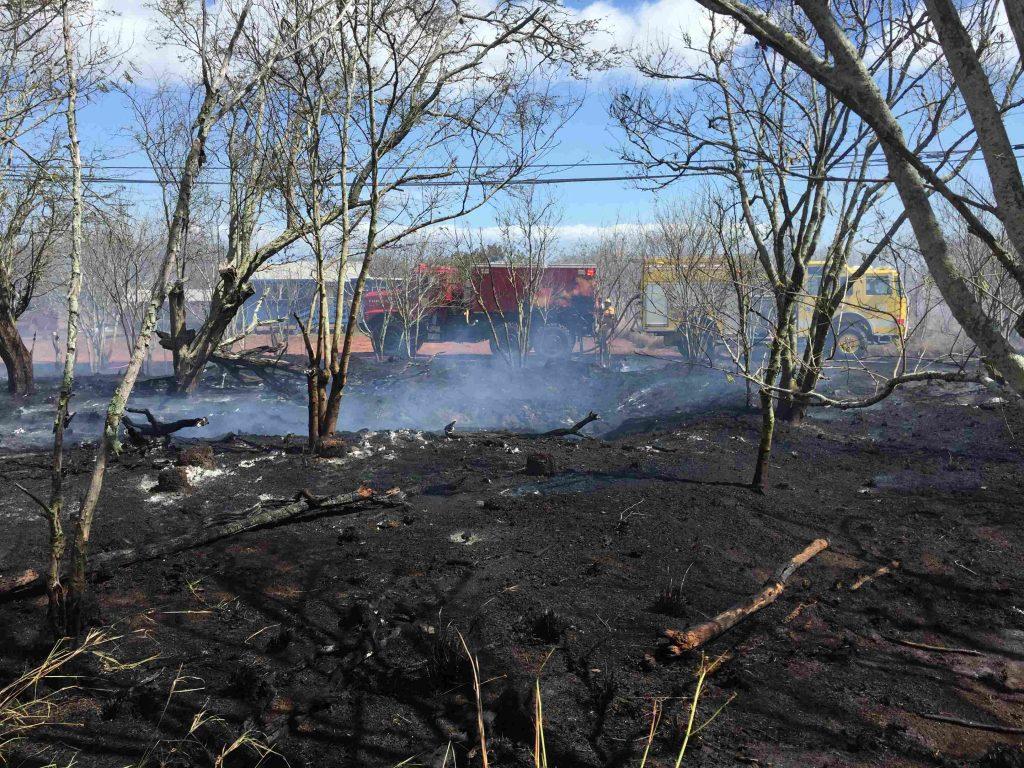 Hoolehua fire. Photo Credit: Maui Fire Department.