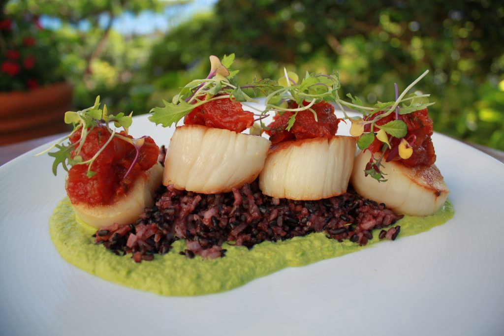 Seared scallops with a green curry pea puree, tomato chutney and micro cilantro. Photo Courtesy Hyatt Regency Maui Resort & Spa.