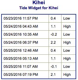 Screen Shot 2016-05-23 at 9.24.41 PM
