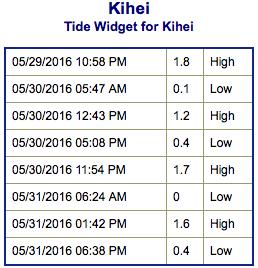 Screen Shot 2016-05-29 at 7.36.25 PM