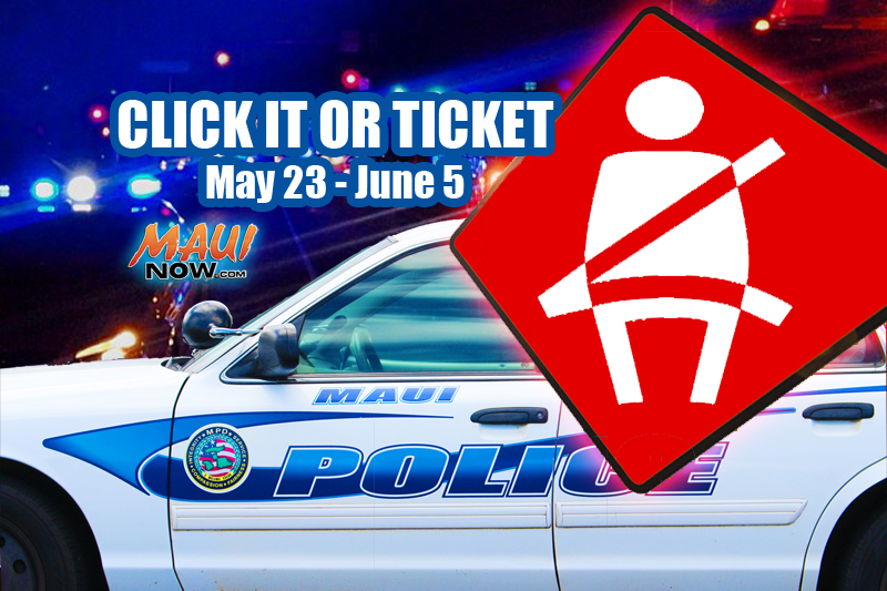 Click It or Ticket 2016. Wendy Osher/Maui Now graphic.