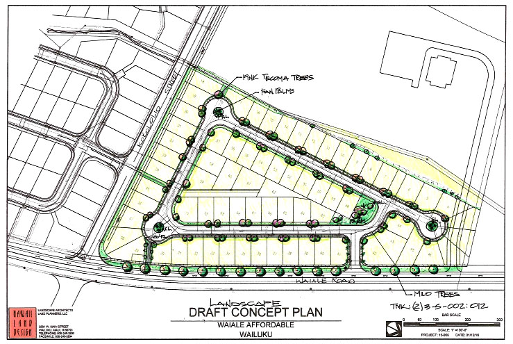 Waiʻale Affordable Housing draft concept plan. Image courtesy Office of Council Services via Hawaiʻi Land Design.
