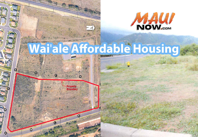 Waiʻale Affordable Housing draft concept plan. Image courtesy Bagoyo Development Consulting Group - Application for Affordable Housing Subdivision.
