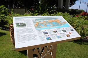 Hyatt-Regency-Maui-Sustainability-Food (1)