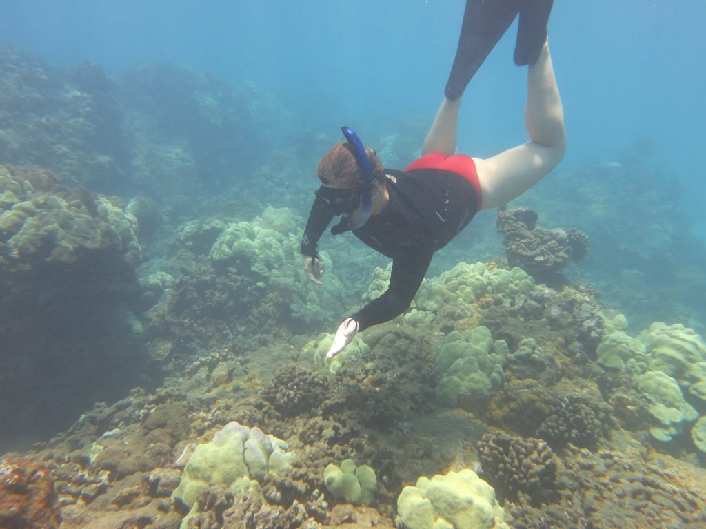 """""""Boatload of Decision Makers"""" Reveals Plight of West Maui Reefs. Photo credit: DLNR."""
