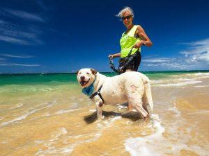 Maui Humane Society worker with dog. Courtesy photo.
