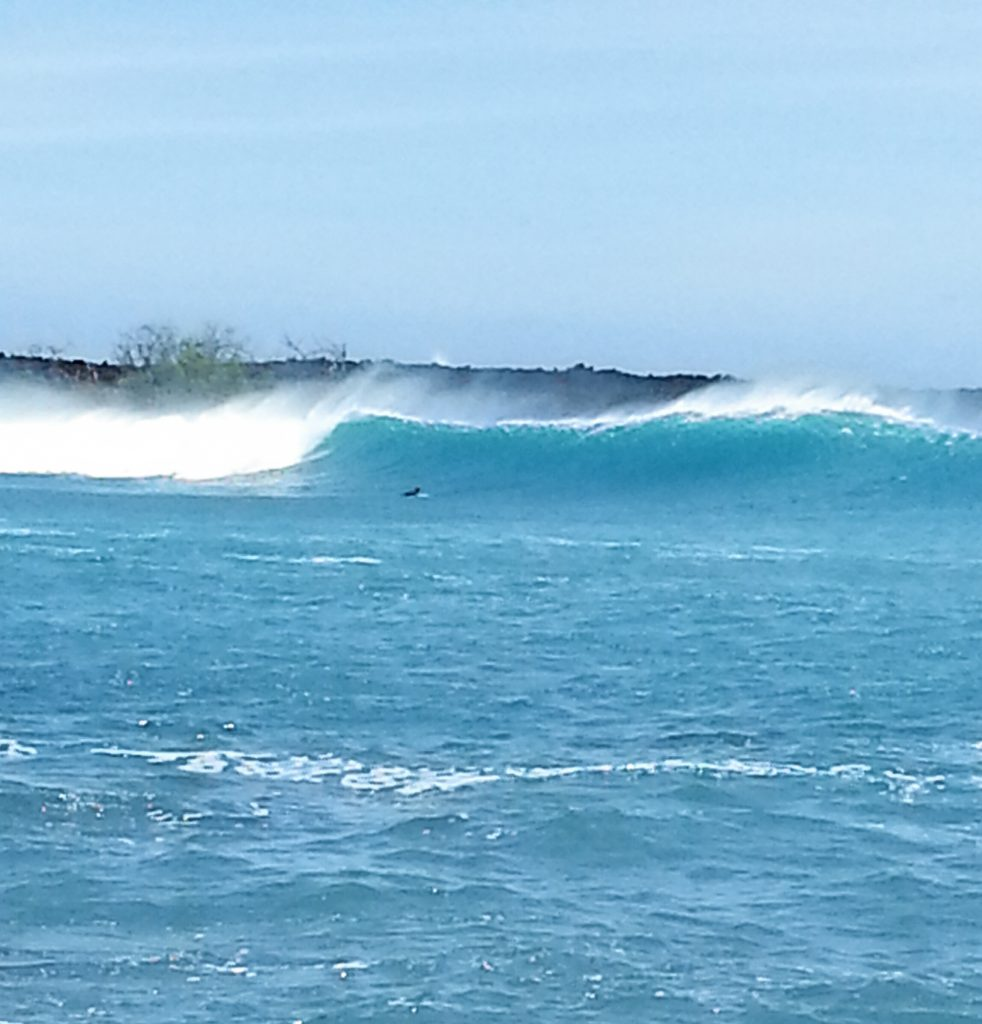 South Swell. Photo credit: James Flynn.
