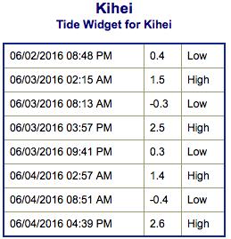 Screen Shot 2016-06-02 at 8.46.11 PM