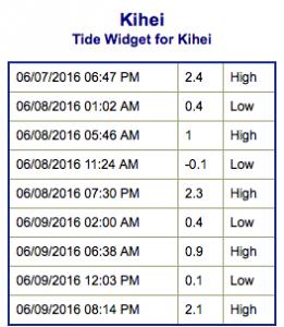 Screen Shot 2016-06-07 at 8.30.05 PM