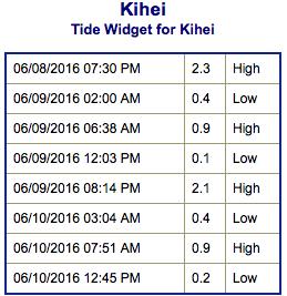 Screen Shot 2016-06-08 at 8.20.07 PM