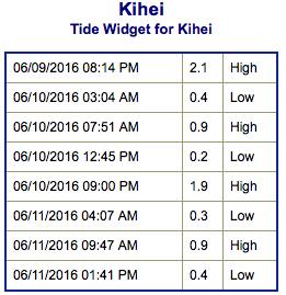 Screen Shot 2016-06-09 at 7.40.10 PM