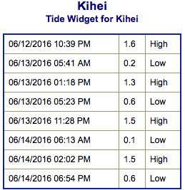 Screen Shot 2016-06-12 at 9.06.52 PM
