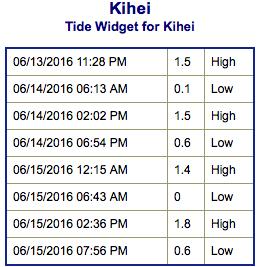Screen Shot 2016-06-13 at 10.18.09 PM