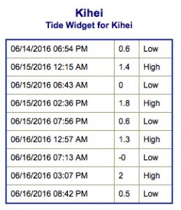 Screen Shot 2016-06-14 at 9.25.15 PM