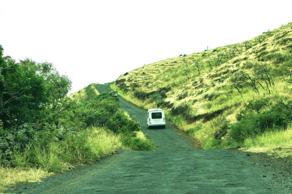 Valley Isle Excursions. Courtesy photo Hawaiʻi Ecotourism Association.
