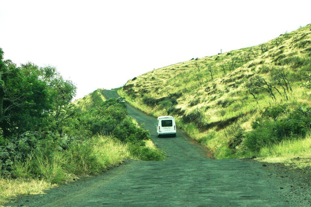 Valley Isle Excursions. Courtesy photo Hawaiʻi Ecotourism Association.