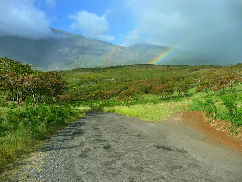 Tourmaui.com Kaupō Rainbow. Courtesy photo Hawaiʻi Ecotourism Association.