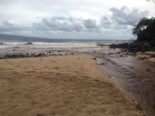 Honokahua Bay (6.17.16) Photo credit: State Department of Health.
