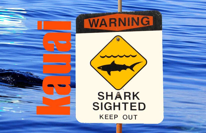 Shark incident, Kauaʻi. Maui Now graphic.
