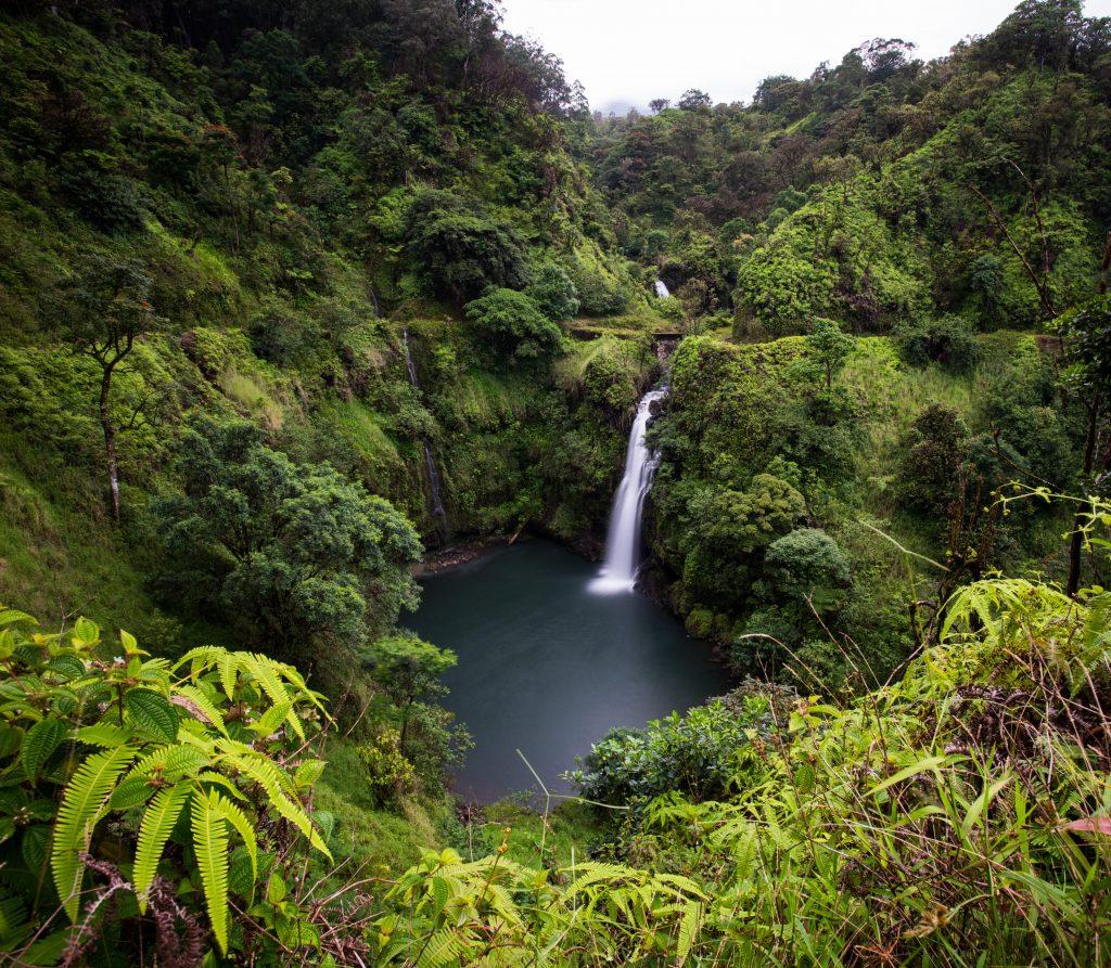 Maui Now: FCC Expands Broadband to Haiku, Hāna, Olowalu