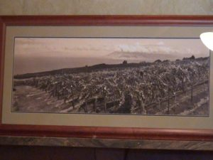 Old photo of the ranch in 'Ulupalakua. Photo by Kiaora Bohlool.