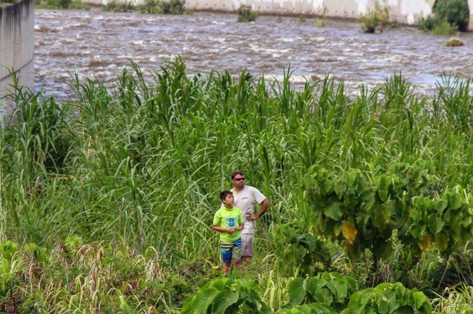 Rescue at Wailuku River (Iao Stream). 7.23.16. Photo credit: Hoku Vasconcellos.