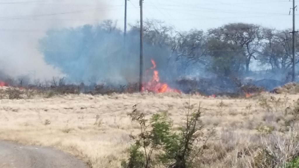 Māʻalaea fire 7.2.16. Photo credit: Kevin John Olson.