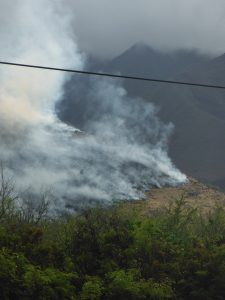 Sarah Turner took these photo near mile marker 13.5. of the Honoapi'ilani Highway at approximately 10 a.m. this morning.