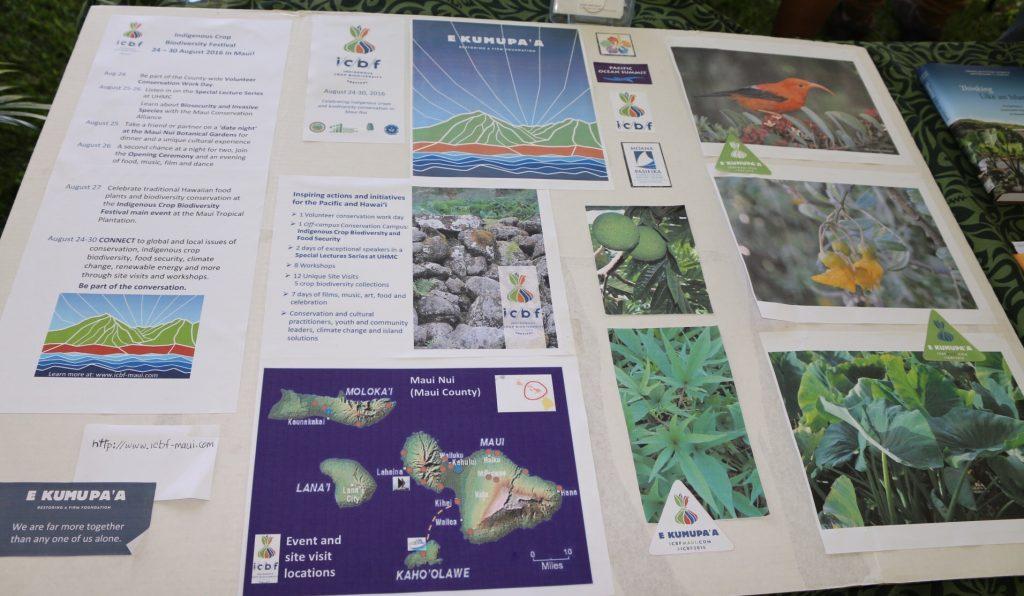 Indigenous Crop Biodiversity Festival poster from the 2016 Taro Festival in Hana. Photo Courtesy Nicole Schenfeld.