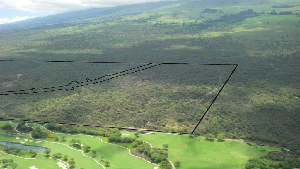 Photo courtesy: DLNR Hawaiʻi.