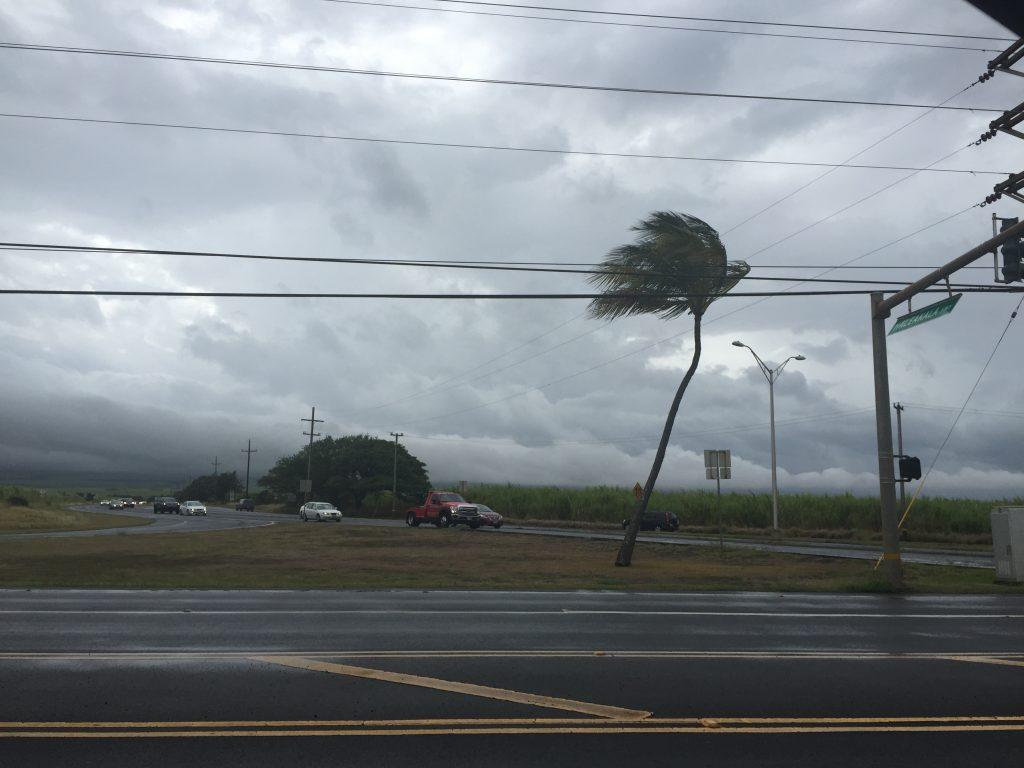Tropical Storm Darby. Haleakalā not visible from corner of Hāna and Haleakalā (8:45 a.m.) 7.24.16. Photo credit: Nicole Schenfeld.