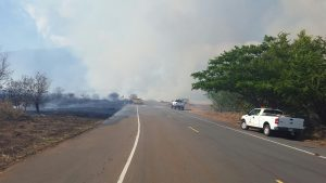 MFD 07.08.16 Olowalu brushfire 9