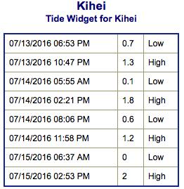Screen Shot 2016-07-13 at 8.16.43 PM