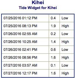 Screen Shot 2016-07-25 at 3.23.43 PM