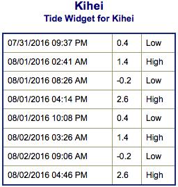 Screen Shot 2016-07-31 at 9.18.40 PM