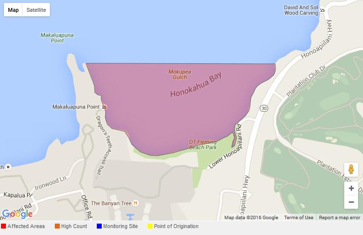 Brown Water Advisory. Honokahua Bay 7.15.16. Courtesy: DOH.