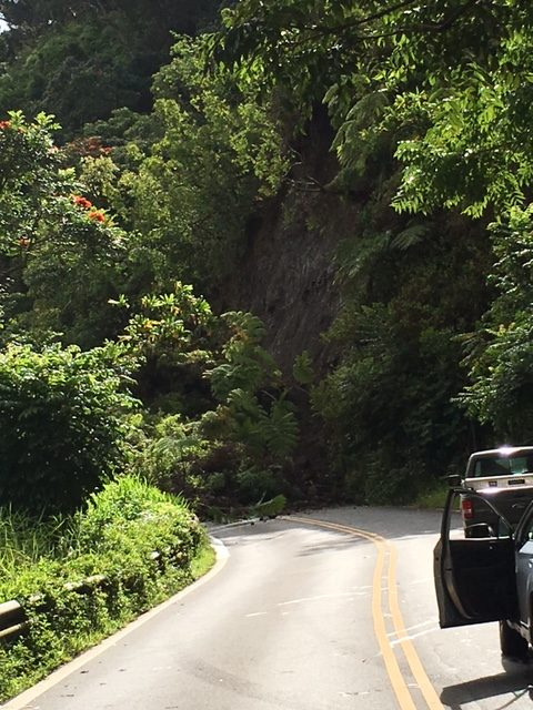Hana Hwy landslide at Wailua. Photo credit Daniel Bowers.