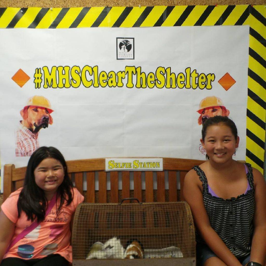 """Clear the Shelter."" Photo courtesy: Maui Humane Society."