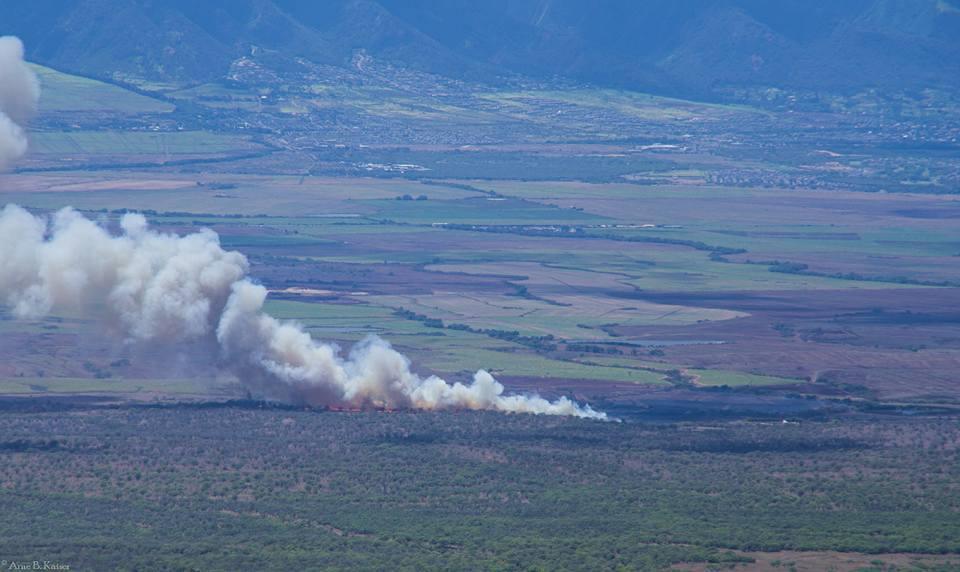 Brush fire, 8.20.16. PC: Arne B. Kaiser