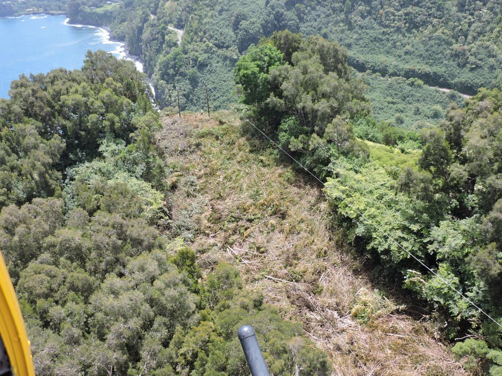 Maui Electric_Keanae Vegetation Management_July 12 2016: As part of this project, crews have been working to clear areas in East Maui where overgrown and dense vegetation were encroaching on electrical lines.