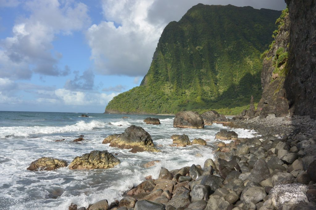 Olokuʻi Natural Area Reserve (foreground) Wailau Forest Reserve (background)