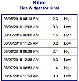Screen Shot 2016-08-05 at 4.17.16 PM