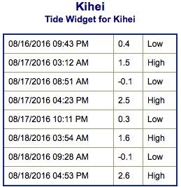 Screen Shot 2016-08-16 at 9.22.47 PM