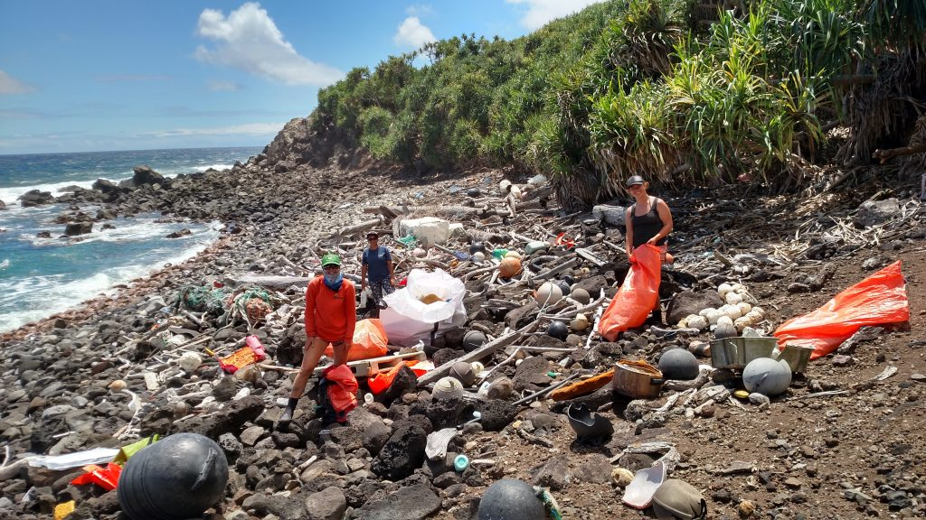 Sustainable Coastline Volunteers DLNR