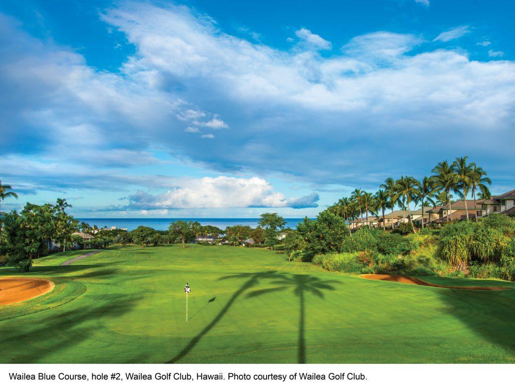 Wailea Blue Course hole #2. Photo credit: Wailea Golf Club.