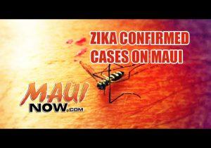 Zika confirmed on Maui. Maui Now image.