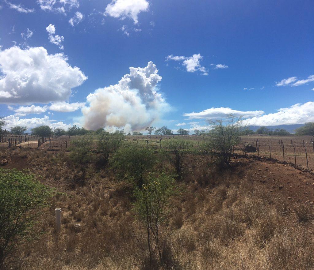 Brush fire, 8.20.16. PC: