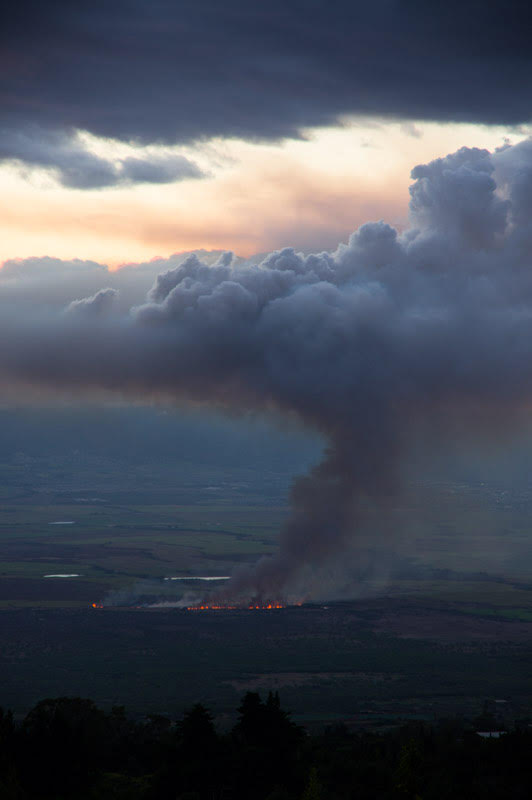 Kula brush fire 8.19.16. Photo credit: Arne B. Kaiser