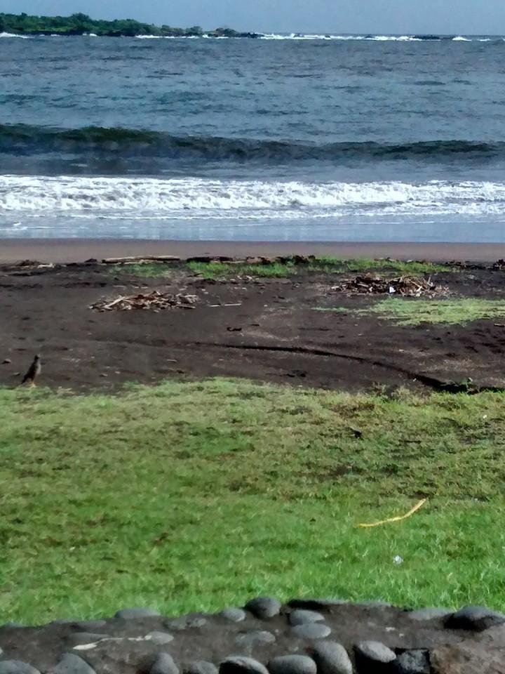 Hāna Bay before. Photo credit: Lehua Cosma